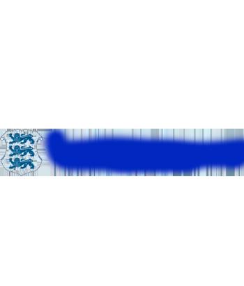 Комиссия по азартным играм Эстонии №HKL000132, от 27.05.2013